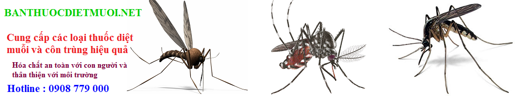 Banner bán thuốc diệt muỗi .net