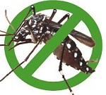 Bán thuốc diệt muỗi